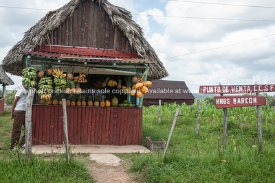 Roadside fruit stall. Prints & downloads.                also see; www.blurb.com/b/3586795-cuba