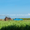 "Rural scene with vintage car and tractor belching out smoke.<br /> Prints & downloads.                also see;  <a href=""http://www.blurb.com/b/3586795-cuba"">http://www.blurb.com/b/3586795-cuba</a>"