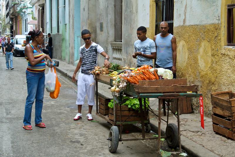 Cuban Rick Schmiedt 2013-123