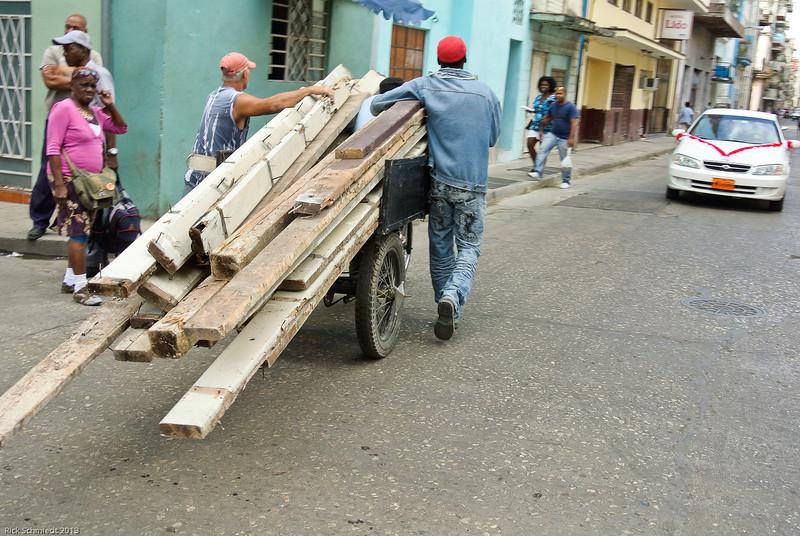 Cuban Rick Schmiedt 2013-133