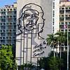 Cuban Rick Schmiedt 2013-219