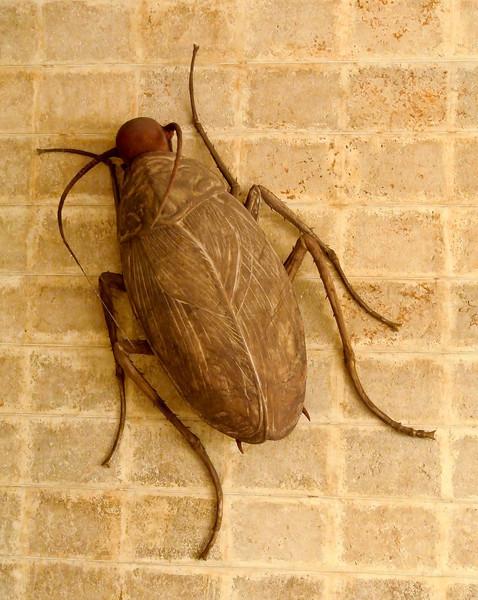 Art Museum human cockroach...