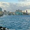 Cuban Rick Schmiedt 2013-140
