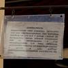 DL9A0490