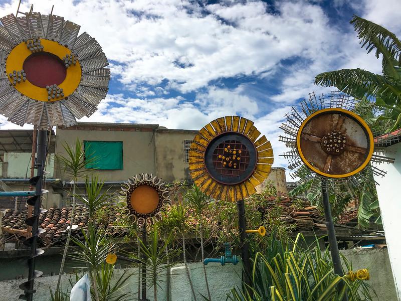 Sunflowers, Cienfuegos