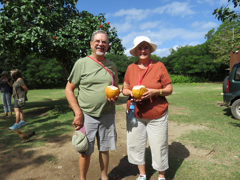 A welcoming coconut drink at Bariay Kay, site of the first landing by Columbus in Cuba on his first voyage.