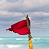 Red flag for our last day in Varadero.