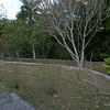 terraced hillside at Museo Ernest Hemingway - Finca Vigia