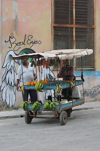 Street vendor near Hamel Alley, Havana, Cuba