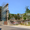 A construction project in Old Havana that was abandoned so long ago the scaffolding has vines growing on it.
