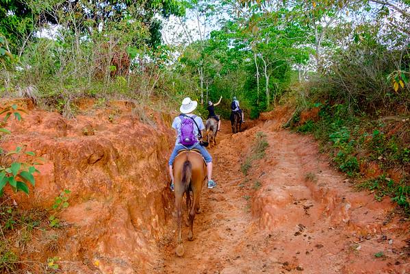 Horseback Tour of the Viñales Valley