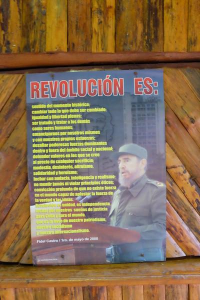 """Inspirational"" poster: ""Revolution is..."""