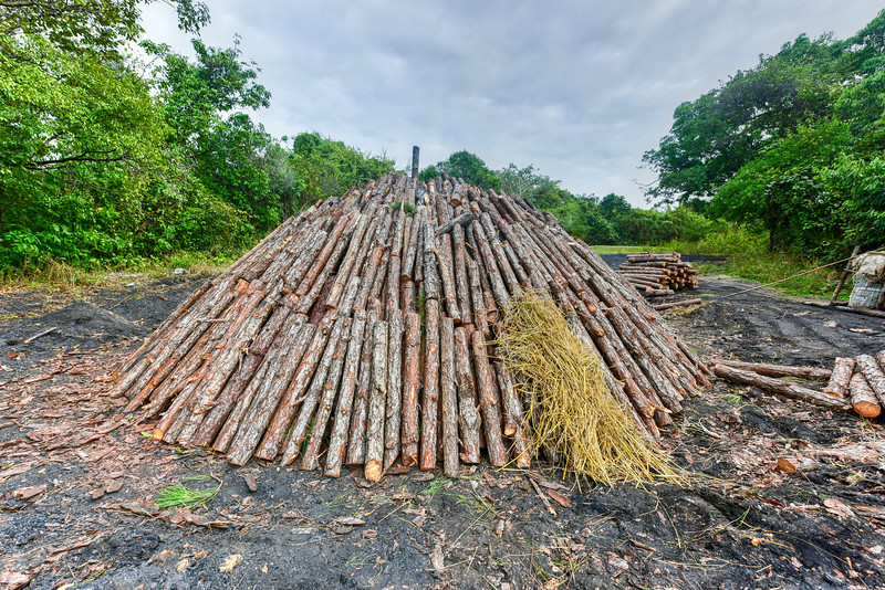 Wood pyre of pine logs
