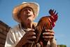 Fowl friend, Trinidad, Cuba