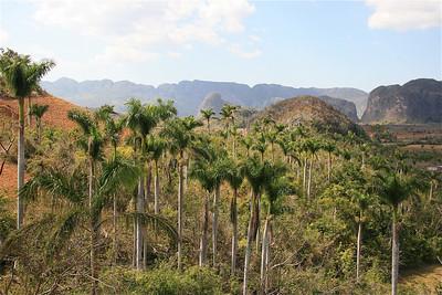 Valle de Vinales, Cuba.
