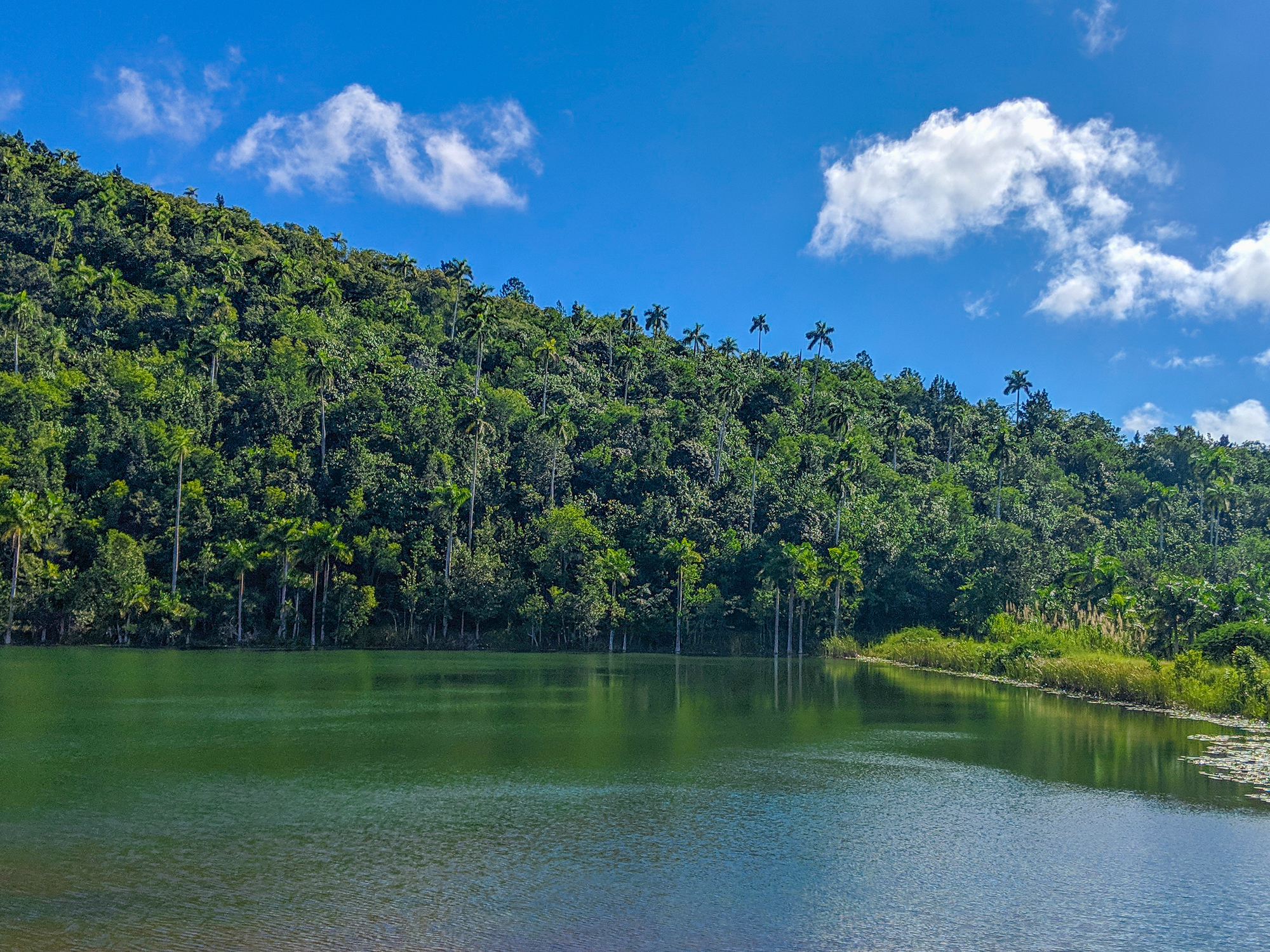 Lago San Juan in Las Terrazas Cuba is a small man made lake in the UNESCO reserve.