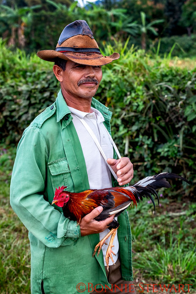 A proud owner of a beautiful rooster