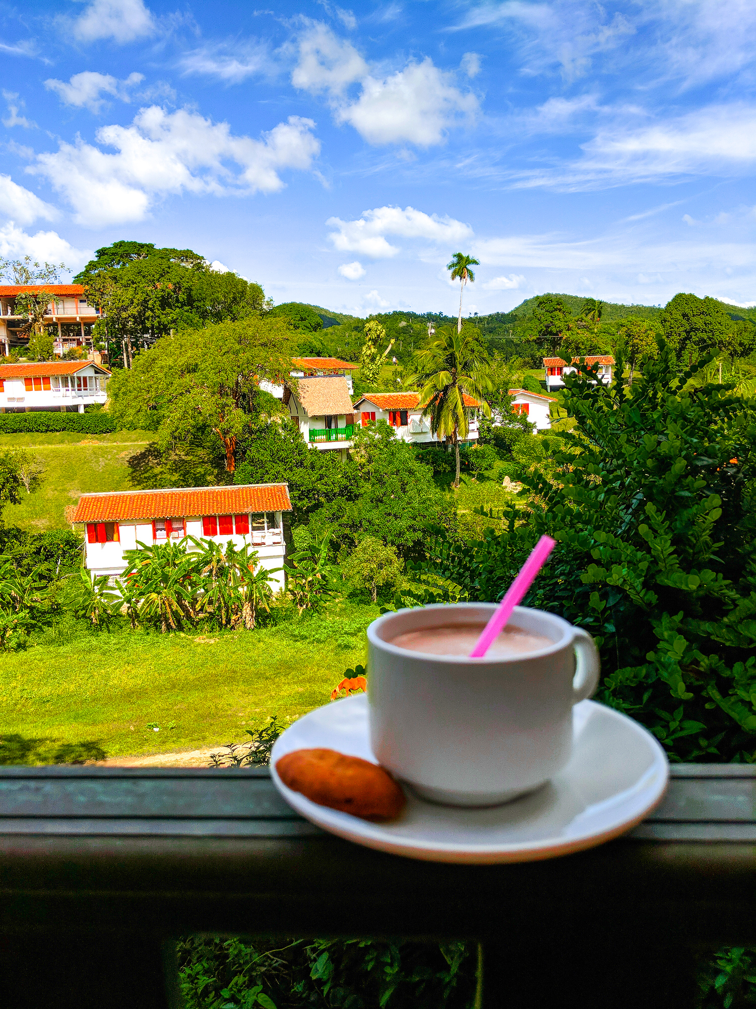 Cafe Terrazas at Cafe Maria in Las Terrazas Cuba, one of the best day trips from Havana.