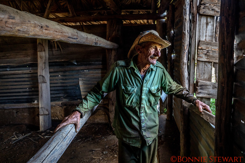This is the farmer who was picking tobacco in the previous photo.  Now you have to go back one photo!