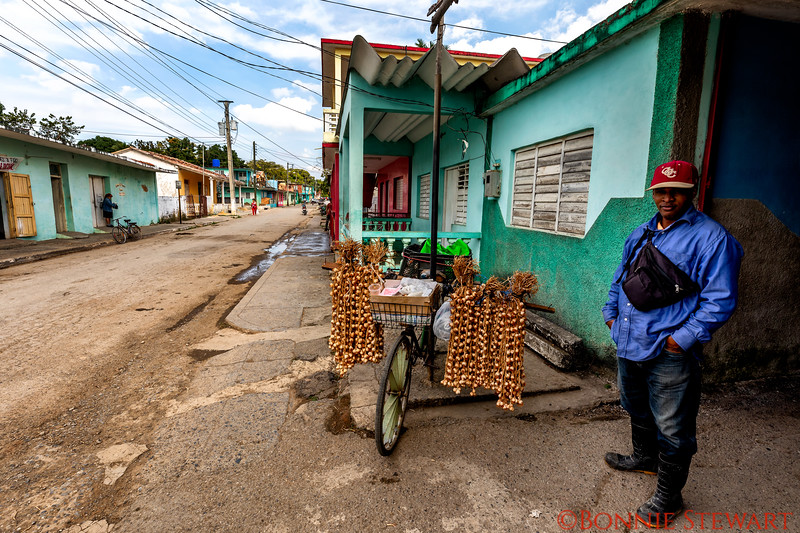 La Palma village and the garlic merchant