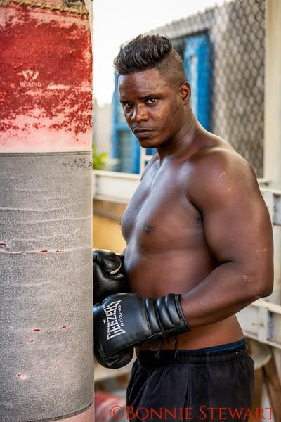 Boxer in practice
