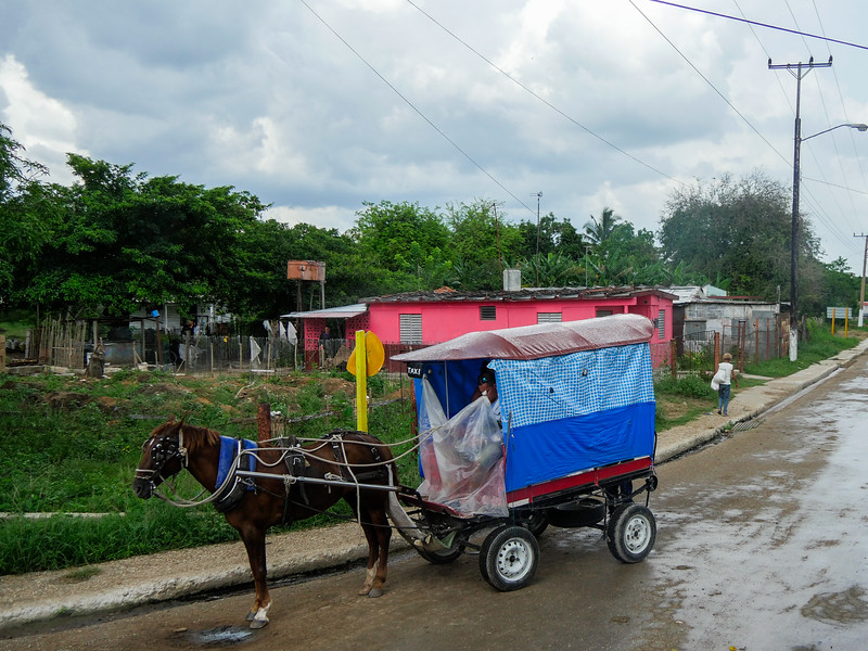 Near Majagua, Road trip from Jucara to Havana, Cuba, June 10, 2016