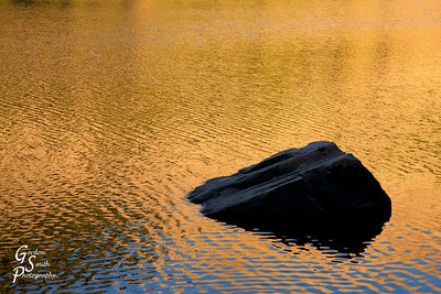 Gold reflections on the lake surface.