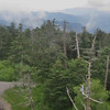 Clingman's Dome West view