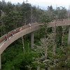 Clingman's Dome Observation Tower Ramp