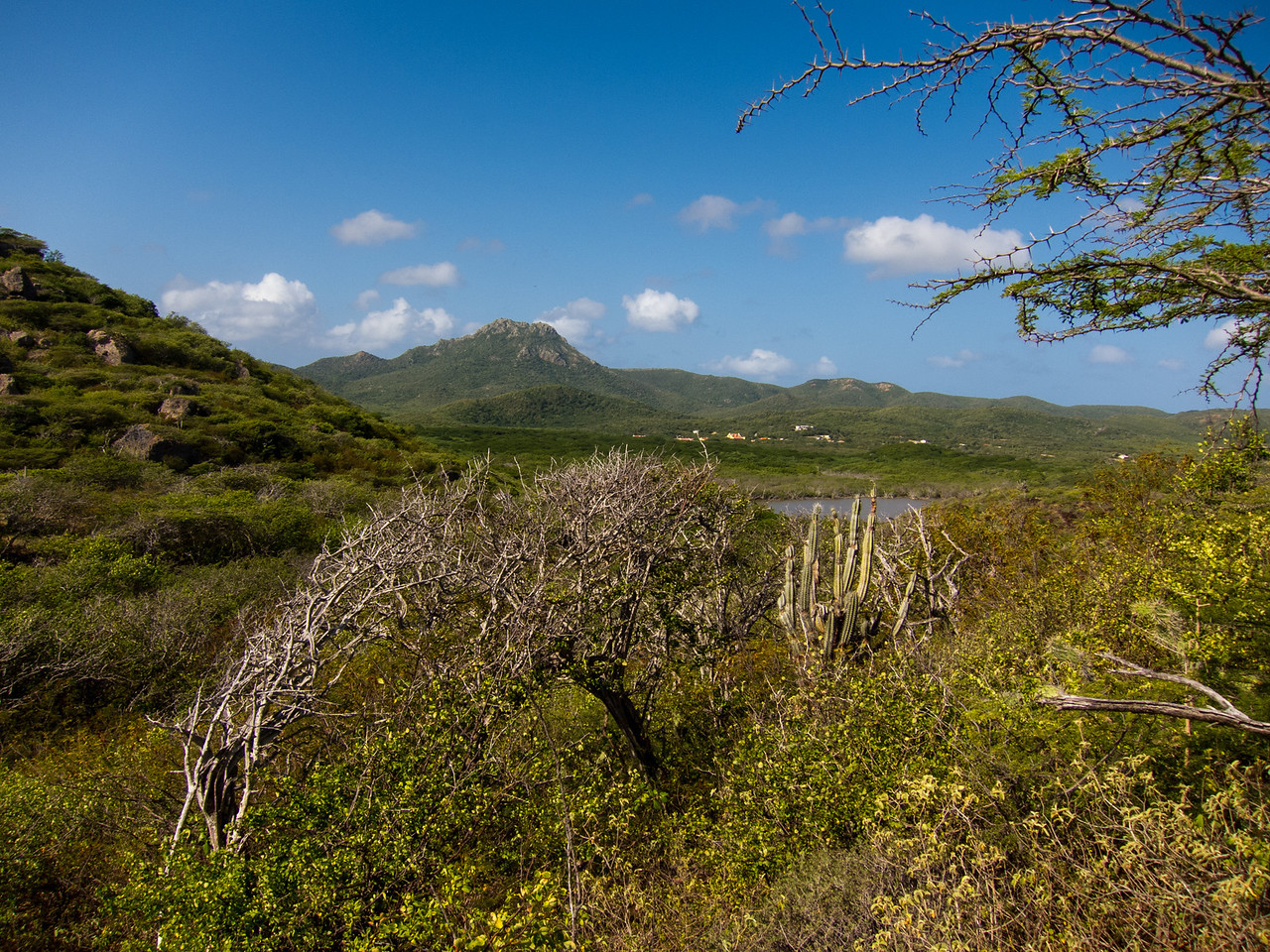 View of Mount Christoffel, Curaçao - February 2013