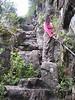 The steep trail up the mountain to WaynaPicchu, overlooking MachuPicchu