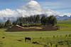 A mountain farm.