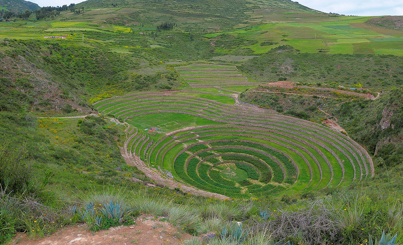 The cylindrical terraces of Moray