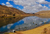 Pampamarca, primera de las 4 lagunas - Combapata - Canchis - Cusco - Perú