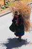 Campesina trabajando - Sangarará - Canchis - Cusco - Perú