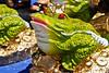 ¿Sapo o rana? - Plaza de Armas - Calca - Valle Sagrado de los Incas - Cusco - Perú<br /> <br /> Toad or frog? - Plaza de Armas - Calca - Valle Sagrado de los Incas - Cusco - Peru<br /> <br /> Pad of kiker? - Plaza de Armas - Calca - Valle Sagrado de los Incas - Cusco - Peru<br /> <br /> Crapaud ou grenouille? - Plaza de Armas - Calca - Valle Sagrado de los Incas - Cusco - Pérou
