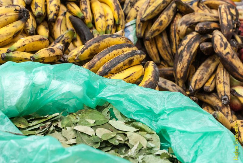 Ambos crecen en Perú pero las hojas de abajo son prohibidos en muchos países - Mercado de Abastos - Chinchero - Cusco - Perú<br /> <br /> Both these agricutral products grow in Peru but the lower ones are prohibited in many European countries - Food Market - Chinchero - Cusco - Peru