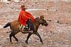 ¡Qué vida más perra! (Cerca de Puquio - Ayacucho - Perú)<br /> <br /> Isn't life a bitch? (Near Puquio - Ayacucho - Peru)<br /> <br /> Chienne de vie (Près de Puquio - Ayacucho - Pérou)<br /> <br /> 't Leven is een strijd (Nabij Puquio - Ayacucho - Peru)