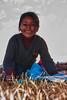 Comité de bienvenida - Feria de Tiobamba – Urubamba – Cusco - Perú <br /> <br /> Welcoming committee - Feria de Tiobamba – Urubamba – Cusco - Peru<br /> <br /> Ontvangstcomité - Feria de Tiobamba – Urubamba – Cusco - Peru<br /> <br /> Comité de bienvenue - Feria de Tiobamba – Urubamba – Cusco - Pérou