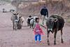El PlayStation del campo - Huarocondo - Anta - Cusco - Perú<br /> <br /> PlayStation Portable of the countryside - Huarocondo - Anta - Cusco - Peru<br /> <br /> PlayStation Portable van het platteland - Huarocondo - Anta - Cusco - Peru<br /> <br /> Le PlayStation Portable de la campagne - Huarocondo - Anta - Cusco - Pérou