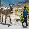 Volviendo del cole - Curahuasi - Apurímac - Perú