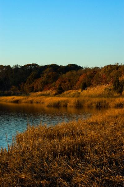 Eastern Long Island