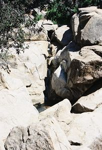5/8/04 Green Valley Falls Trail, Cuyamaca SP