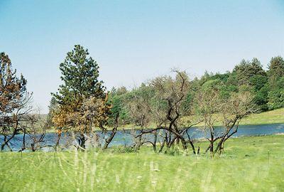 5/8/04 Lake Cuyamaca