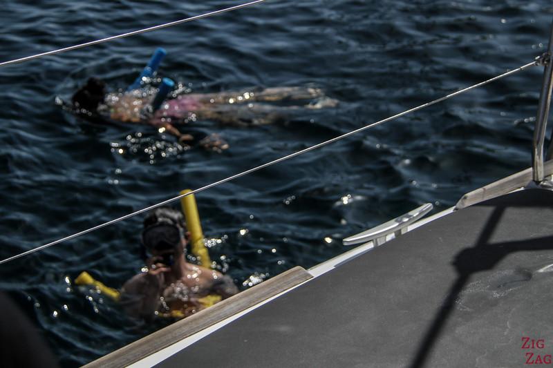 Tour en catamaran à Santorin - nager