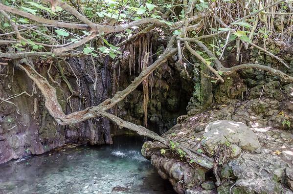 The Bath of Aphrodite