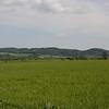 Tracking Fields :)