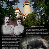 Hunting lodge of the Archduke Franz Ferdinand, successor to the Austro - Hungarian throne, Pictured with his wife Zofie Chotkova before their assassination in Sarajevo in 1914, which started the World War One.  The bear is alive and not that old :)<br /> Castle Konopiste, September 7, 2009