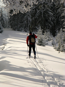 Near Holubnik mountain pass. Skiing in Jizera Mountains (Jizerske hory).