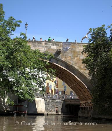 Along the canal, Prague